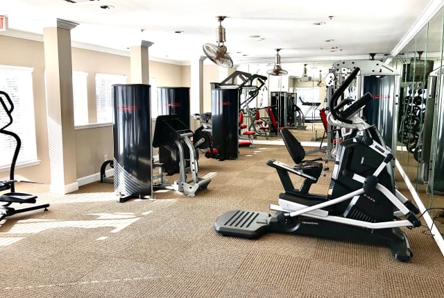 Gym overview at The Abbey on Lake Wyndemere in The Woodlands, TX