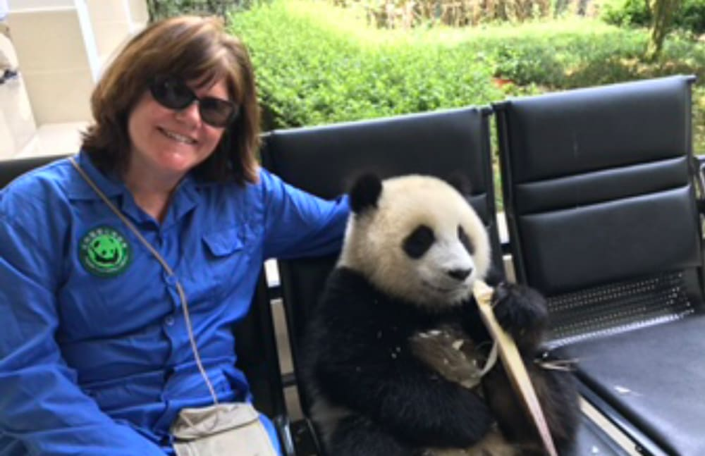 Colleen T. Nistler from Touchmark Central Office in Beaverton, Oregon with a panda