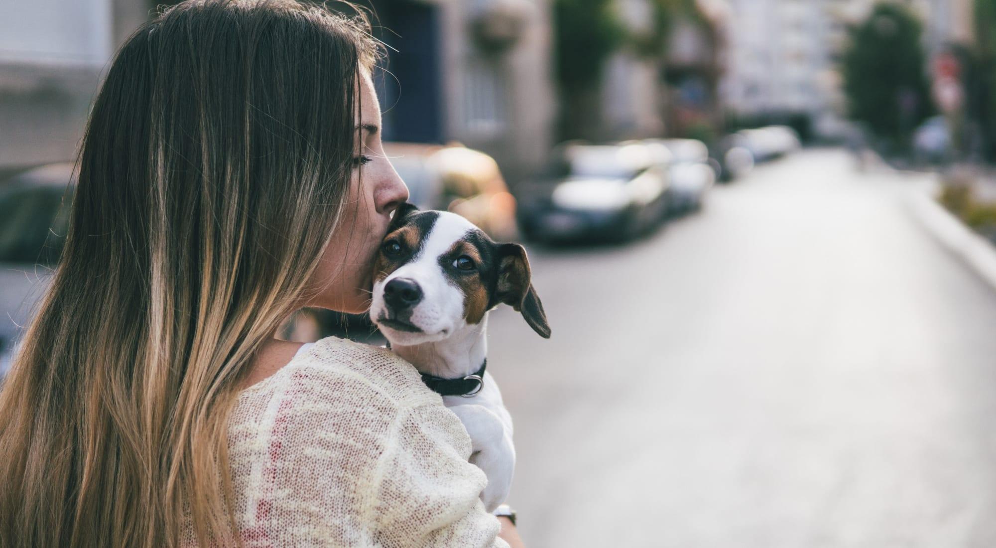 Pet-friendly apartments at Sofi Irvine in Irvine, California