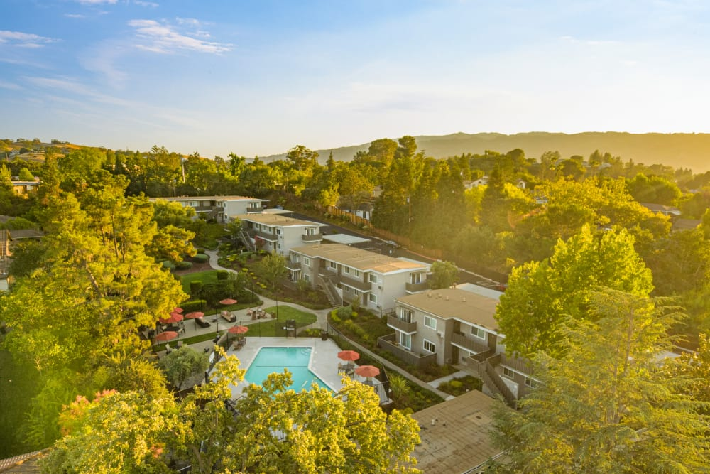 Beautiful view of the property's lush vegetation from a distance at Pleasanton Heights in Pleasanton, California