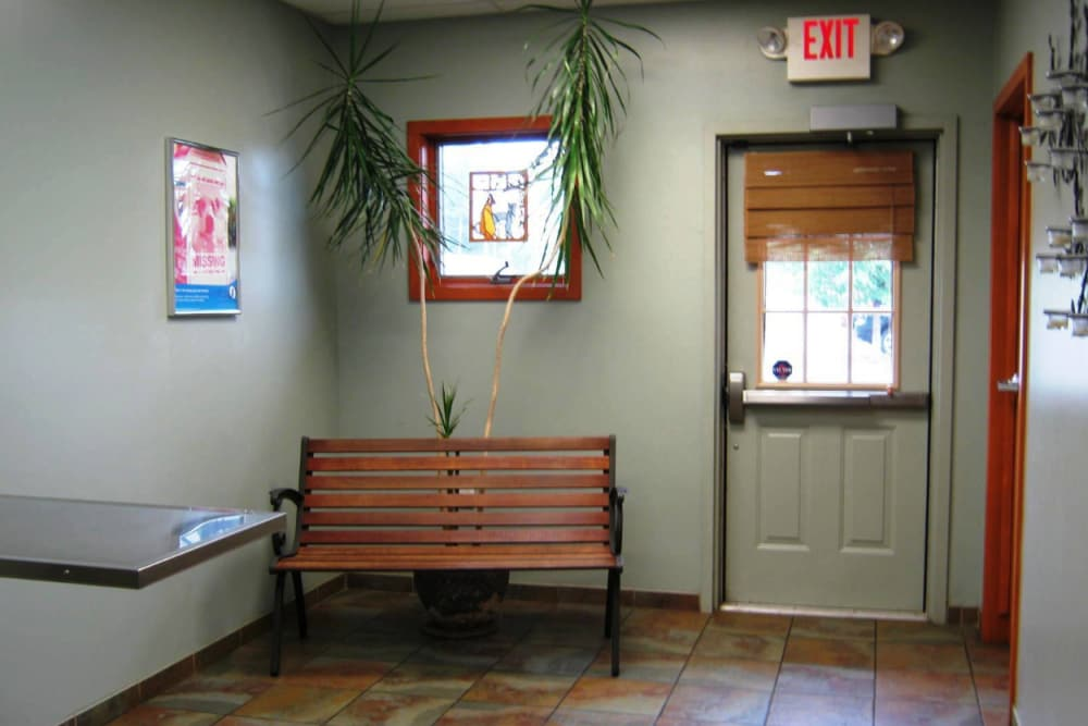Bench inside exam room at Niles Veterinary Clinic in Niles, Ohio