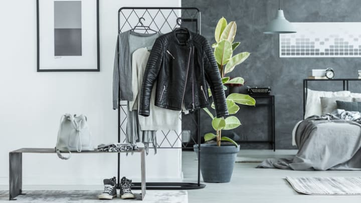 Clothes on rack and backpack on bench against wall with poster in grey bedroom with ficus tree near {{location_name}} in {{location_city}}, {{location_state_name}}