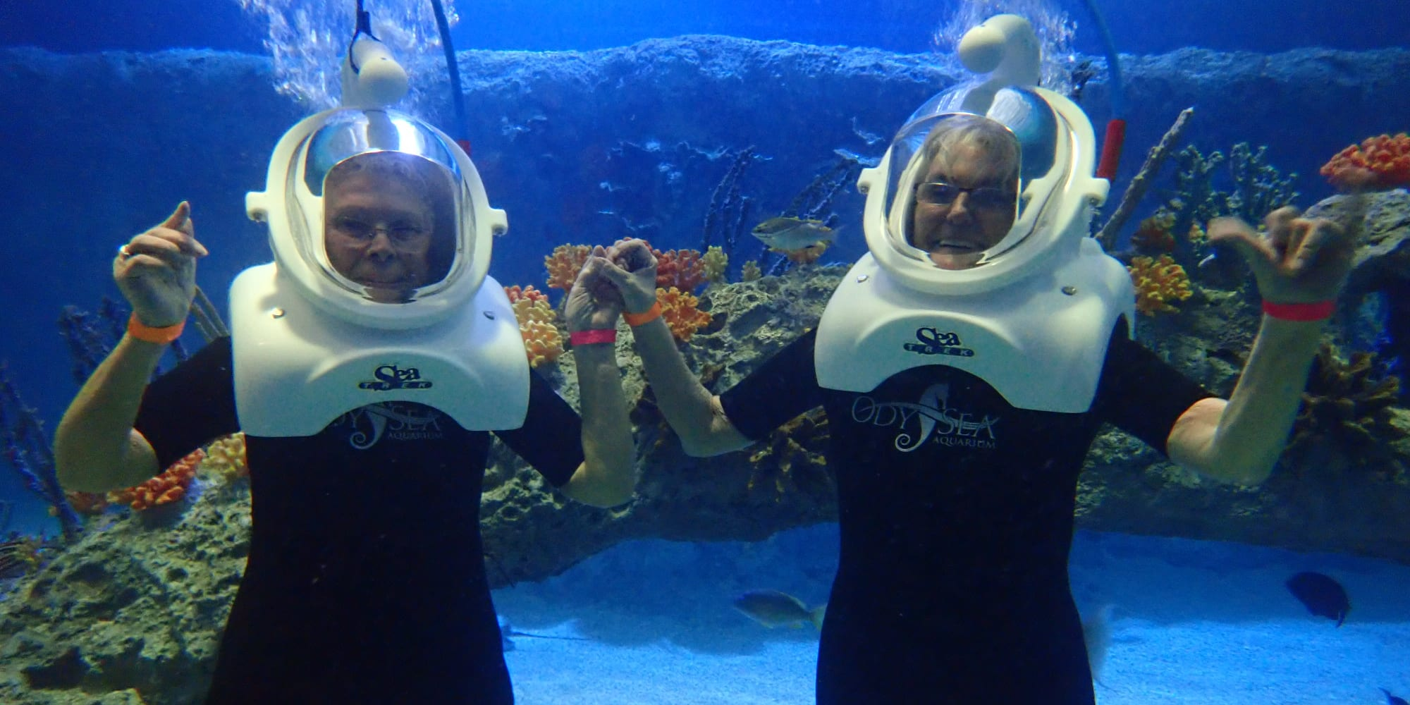 Two resident from Glenmoore Gracious Retirement Living in Happy Valley, Oregon scuba diving