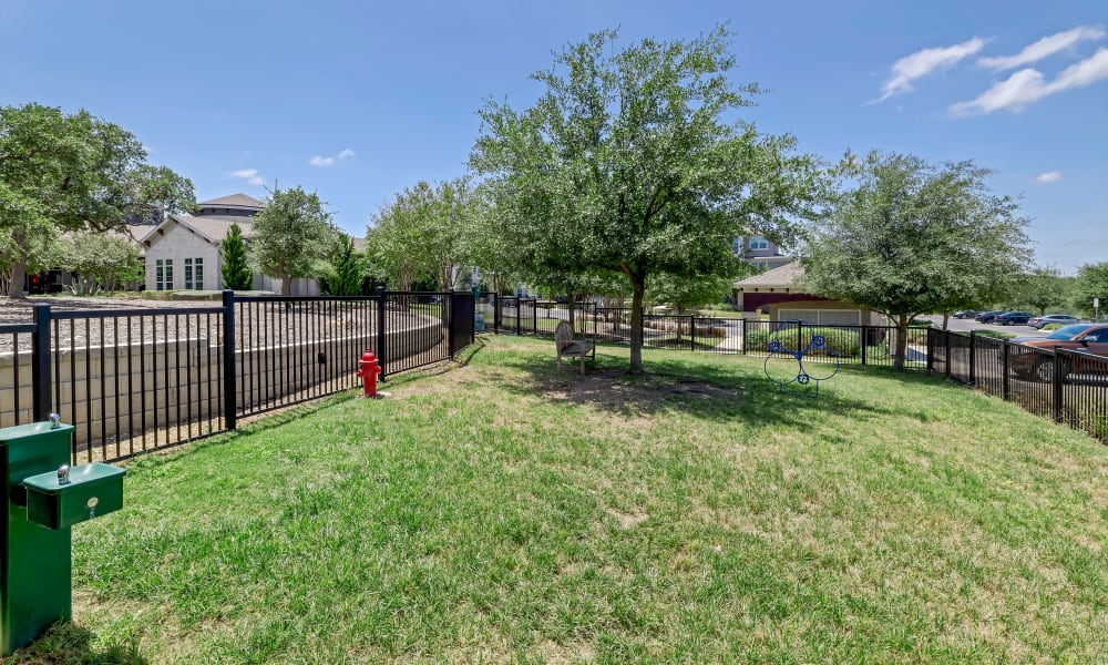 Dog Park |  Wiregrass at Stone Oak