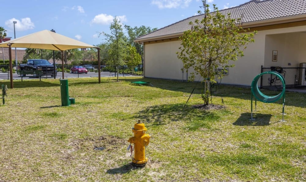 Pet playground at Springs at Gulf Coast in Estero, FL
