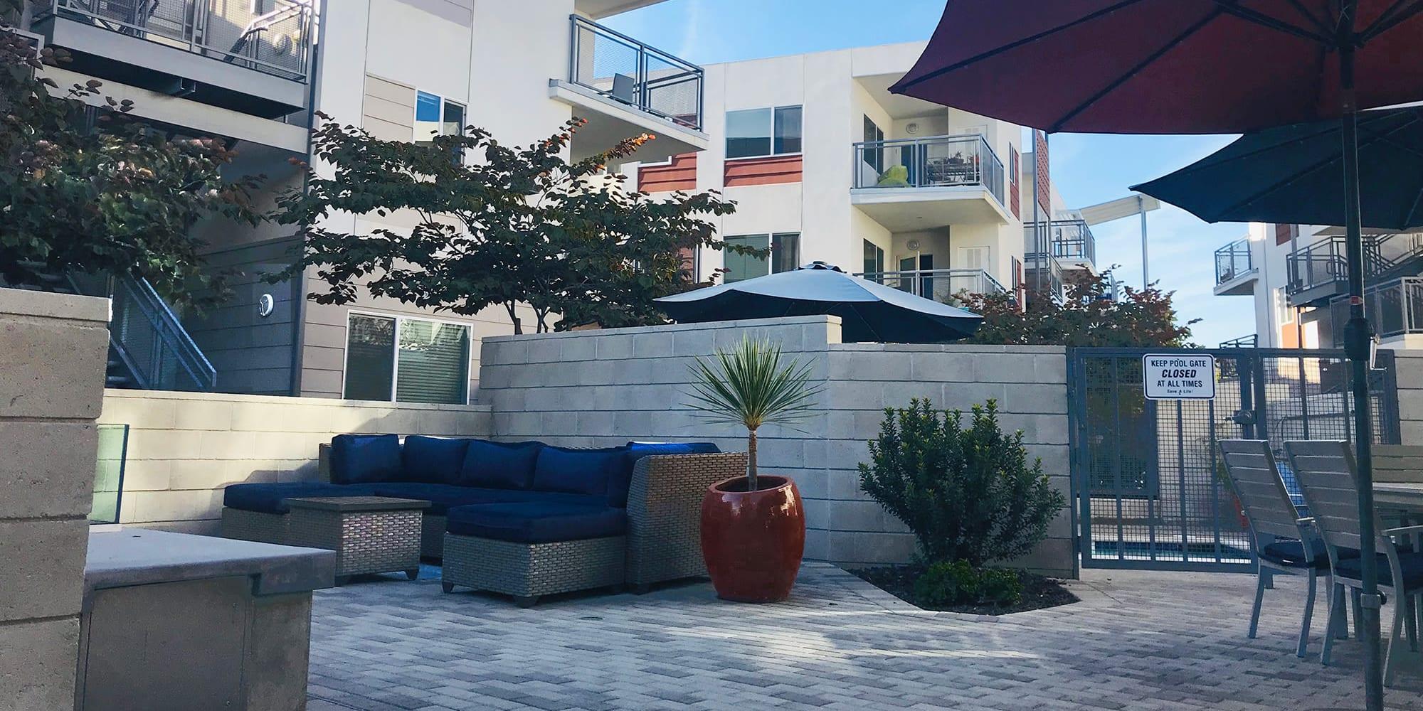 Umbrellas and mature trees providing shade at an outdoor lounge area at Citron in Ventura, California