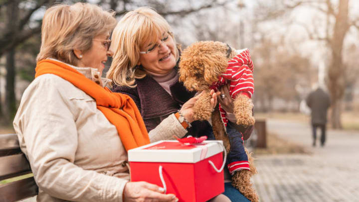 Adult woman and senior on park bench with a gift and a small dog near {{location_name}}.