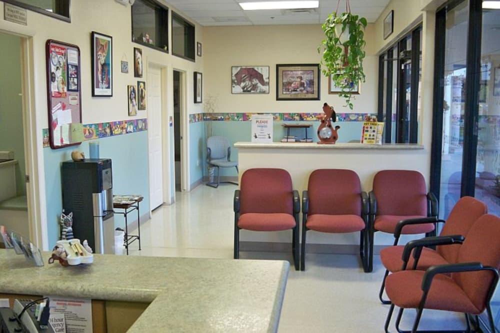 Lobby at Red Mountain Animal Hospital in Mesa, Arizona