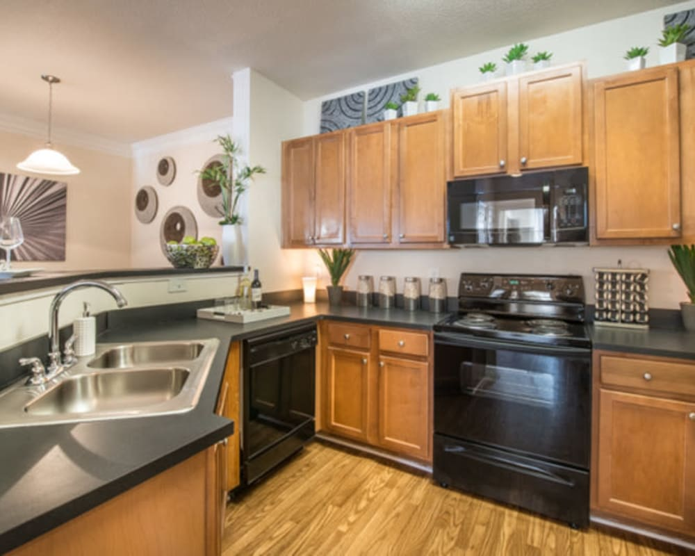 Modern kitchen with black appliances in a model home at Walden at Chatham Center in Savannah, Georgia