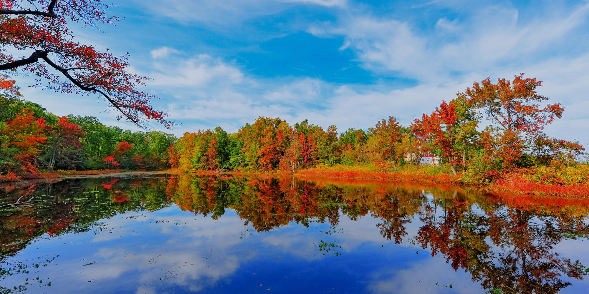 Bright colored trees reflecting in the water