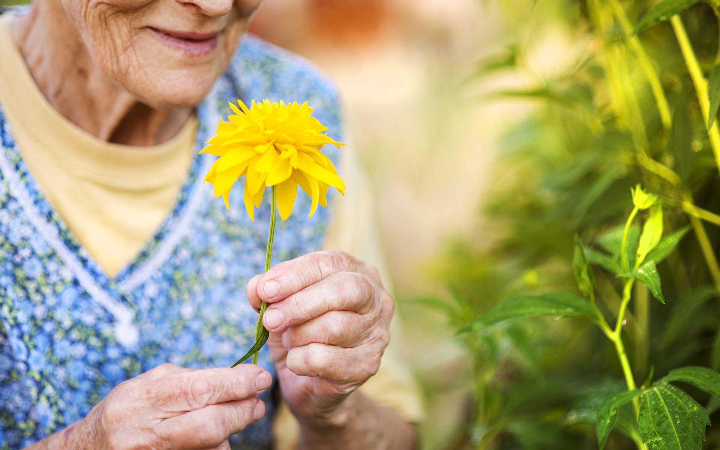 A Holistic Approach to Health and Wellness