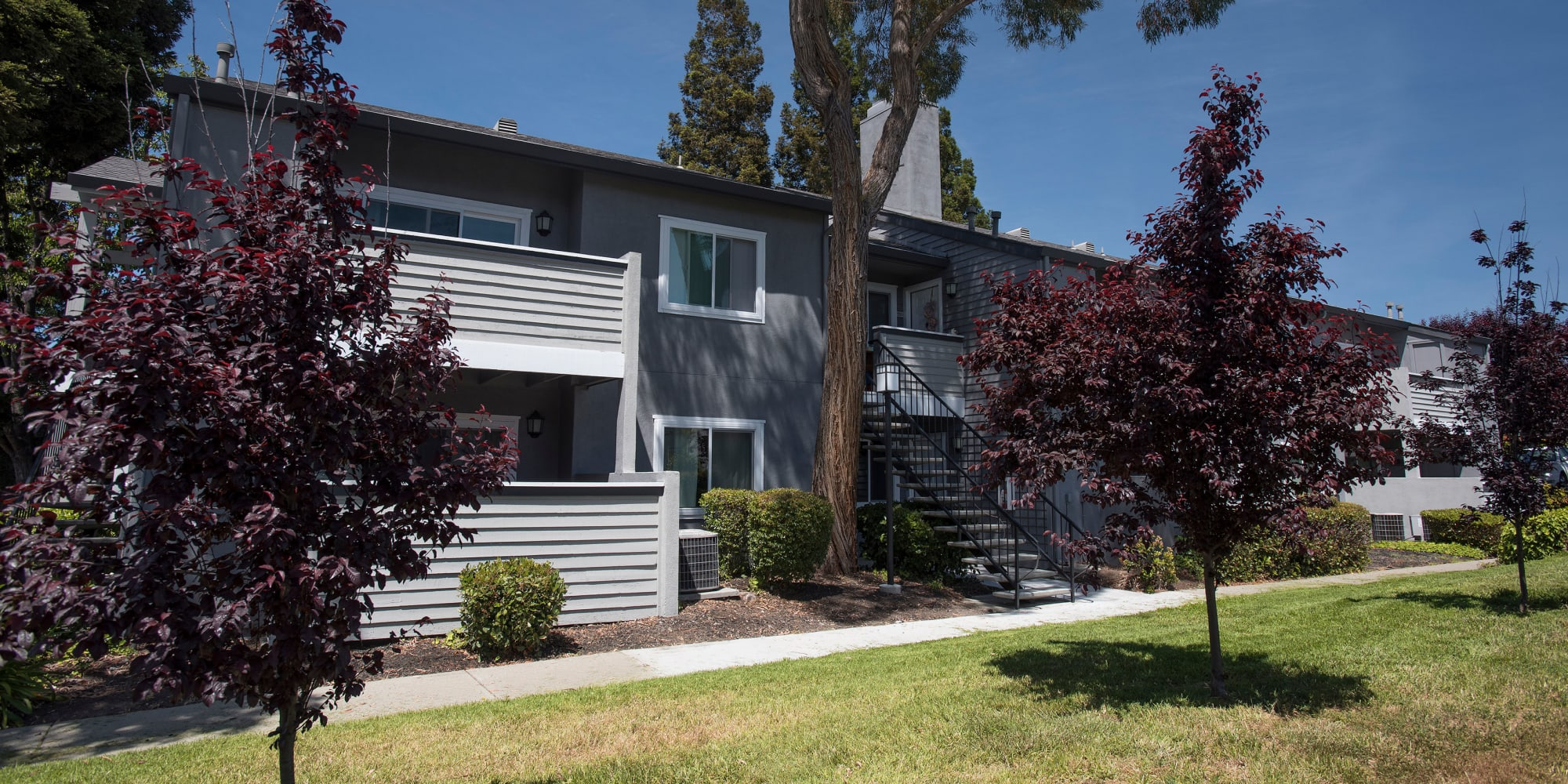 Martinez, California, apartments at Plum Tree Apartment Homes