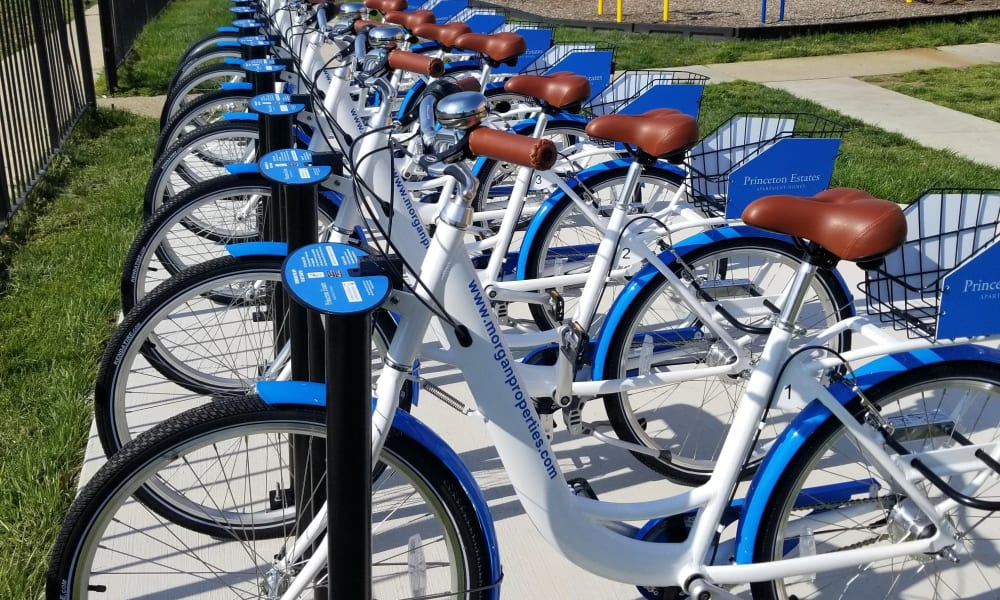 Bike Share at Princeton Estates Apartment Homes