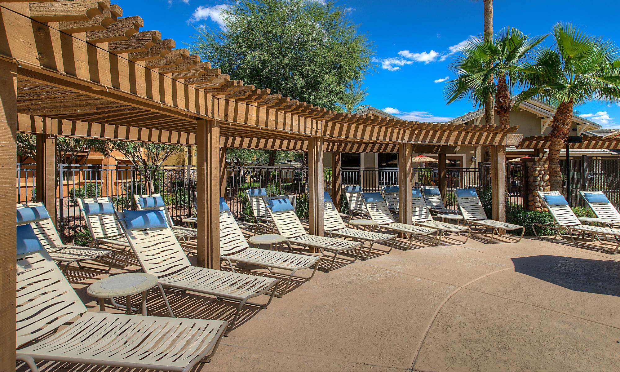 Apartments in Gilbert, Arizona at Azul at Spectrum