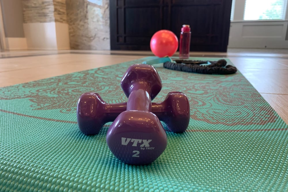 Fitness equipment at Artistry at Craig Ranch in McKinney, Texas