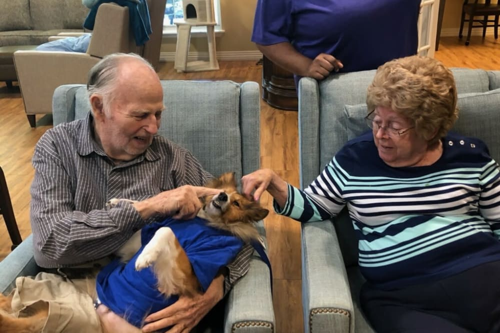 Residents petting a dog at Autumn Grove Cottage at Champions in Spring, Texas