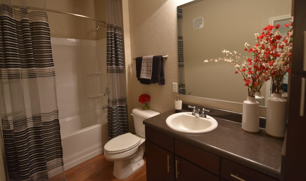 Updated bathroom at Springs at Liberty Township Apartments in Liberty Township