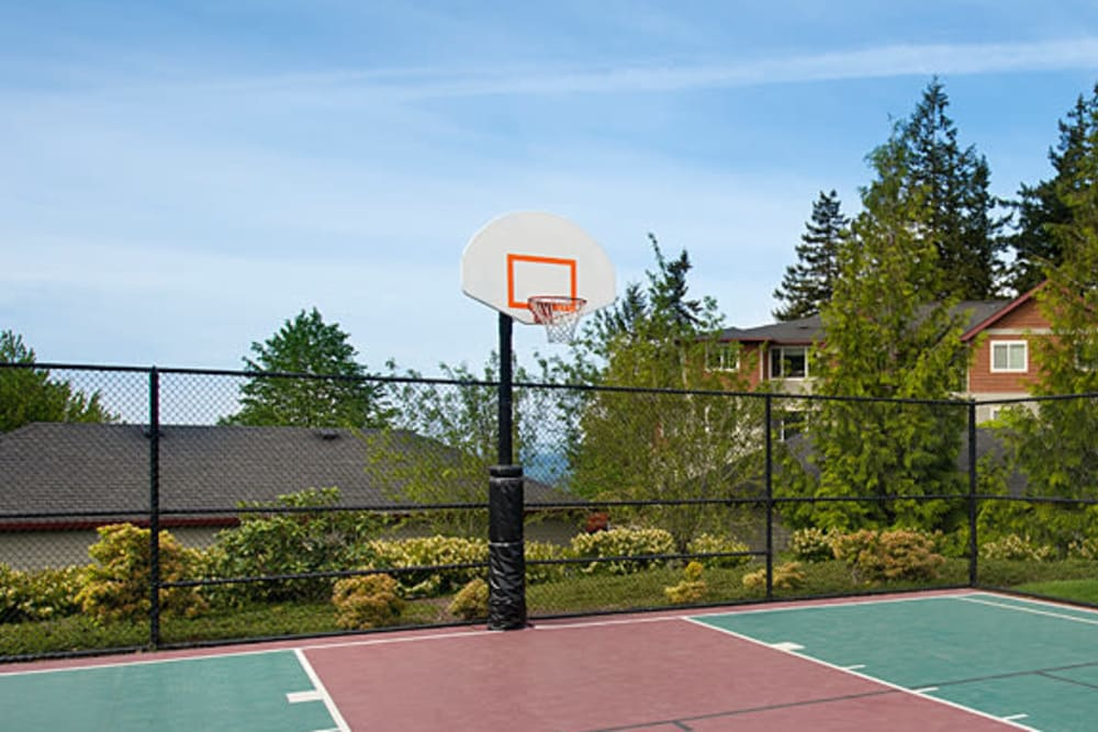 A nice basketball court at Altamont Summit in Happy Valley, Oregon