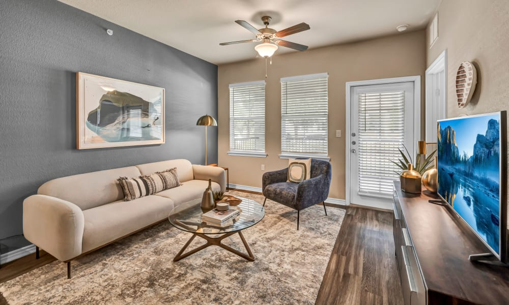 Apartment Living Room |  Wiregrass at Stone Oak
