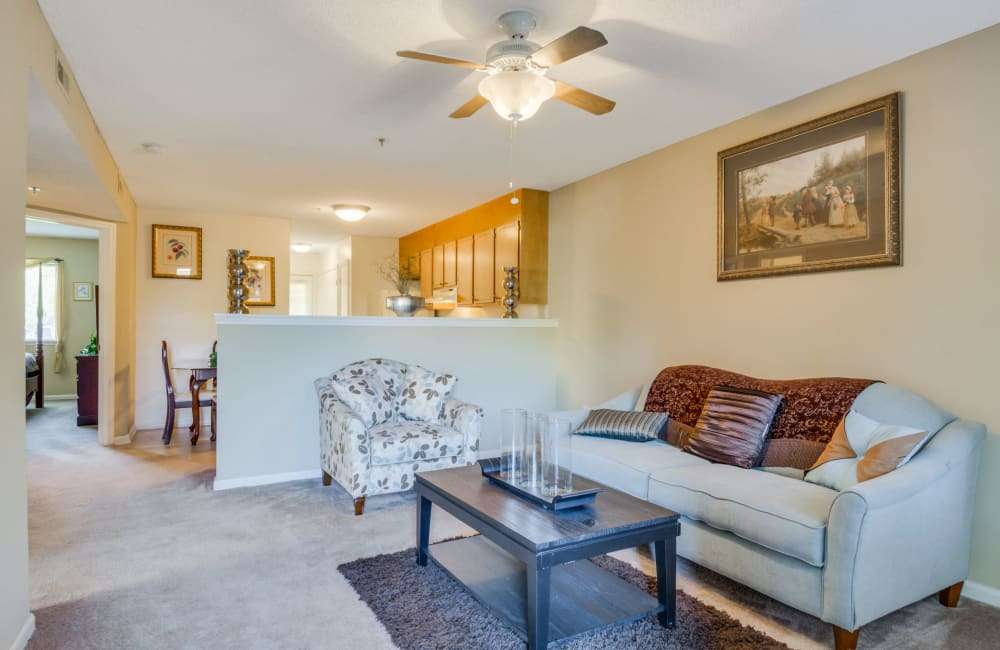 Spacious living room with plush carpeting and natural lighting at Woodbrook Apartment Homes in Monroe, North Carolina