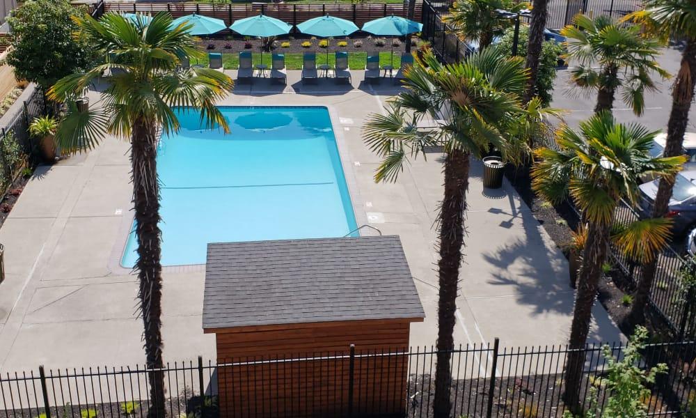 Pool at Vue Alameda