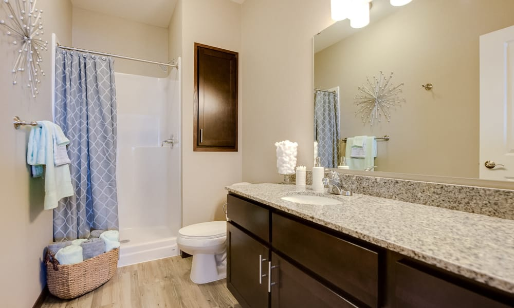 Bathroom at Remington Cove Apartments in Apple Valley, Minnesota