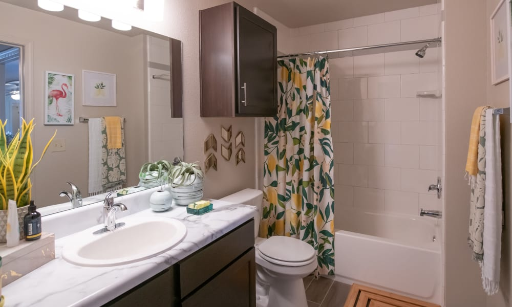 Shower and tub combo in bathroom at Portico at Friars Creek Apartments in Temple, Texas