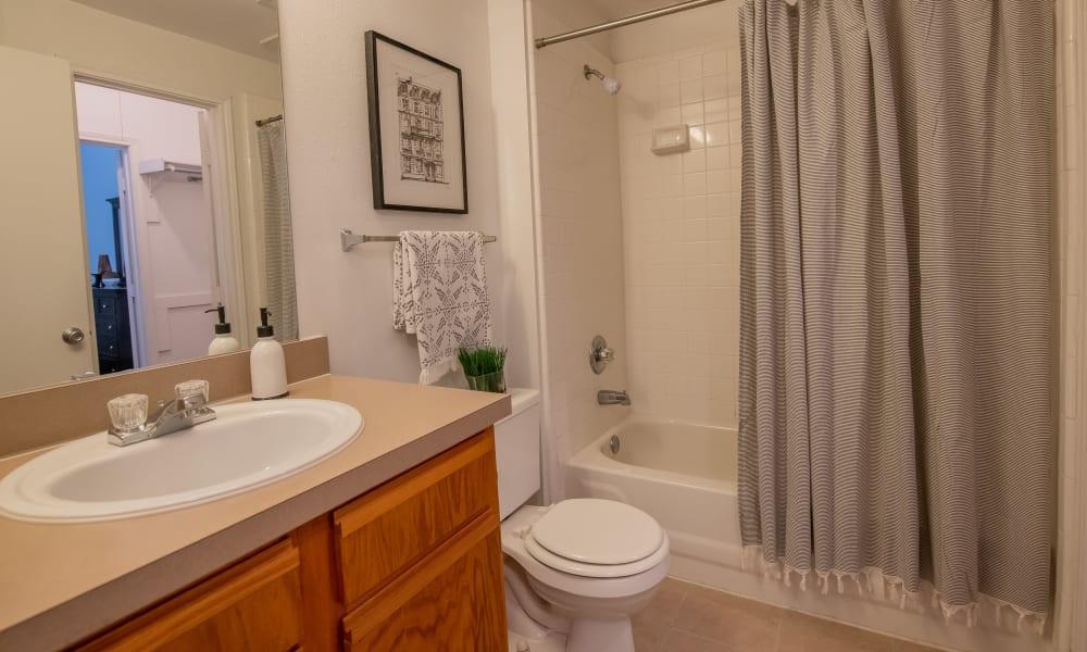 An apartment bathroom at The Pointe of Ridgeland in Ridgeland, MS
