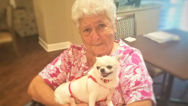 Woman holds a small white dog in her arms