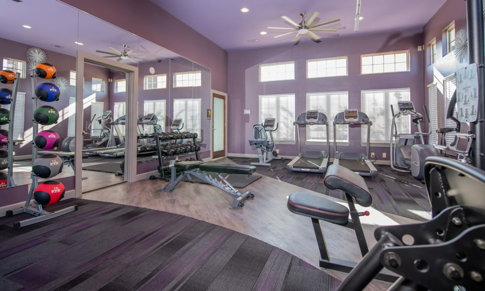 Fitness center for resident use  at Portico at Friars Creek Apartments in Temple, Texas
