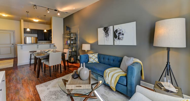 Lovely model living room at 401 Oberlin in Raleigh, North Carolina