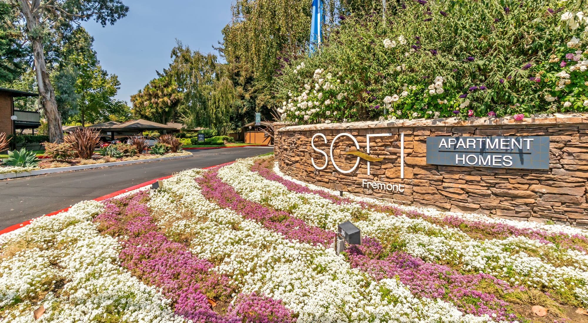 Neighborhood at Sofi Fremont in Fremont, California