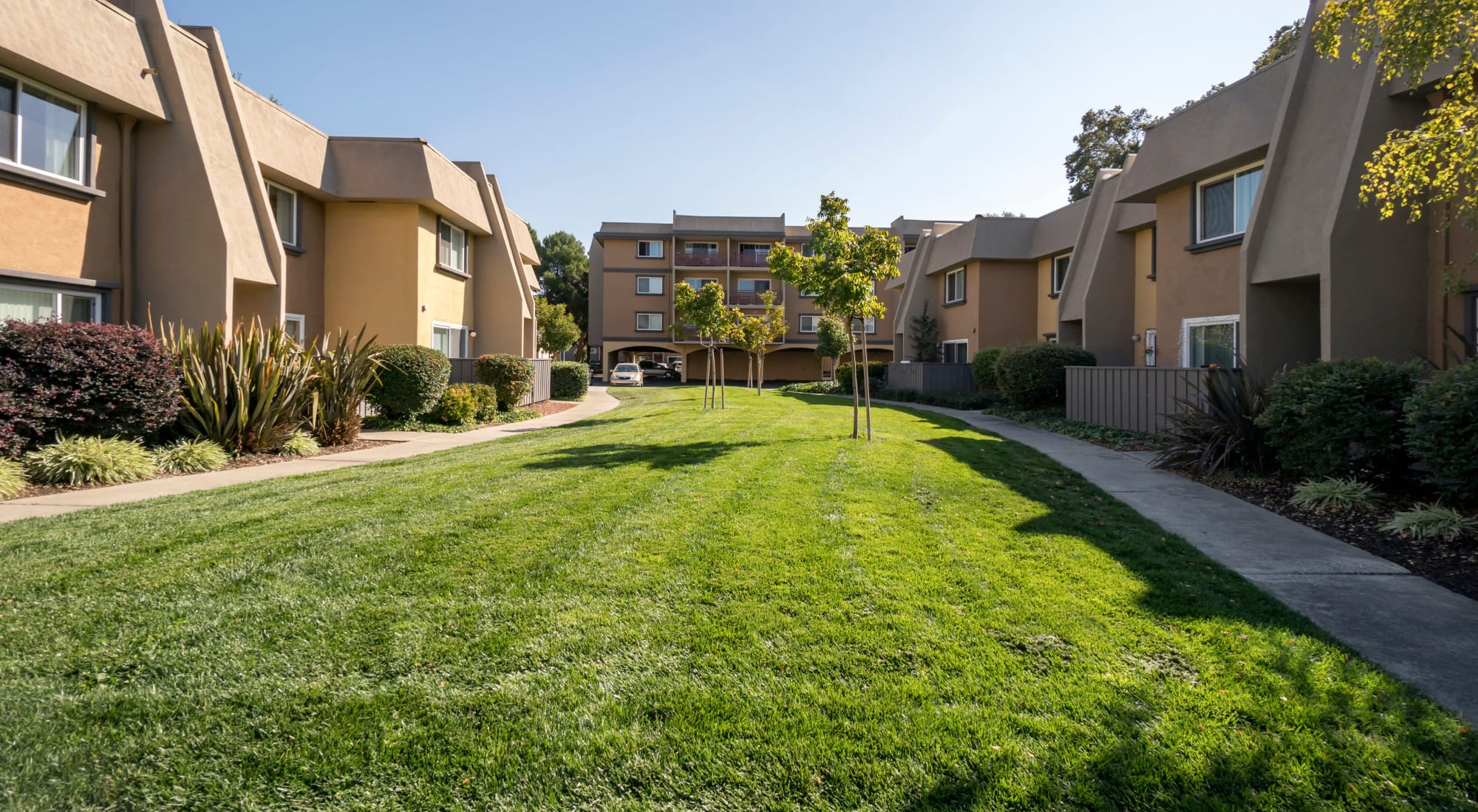 Pet-friendly apartments at Waterstone Fremont in Fremont, California