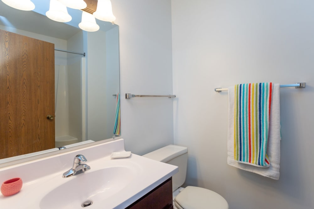 Bathroom at 1820 South Apartments in Mount Pleasant, Michigan.
