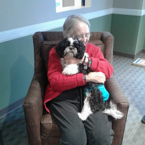 A resident with her dog at First & Main of Commerce Township in Commerce Township, Michigan