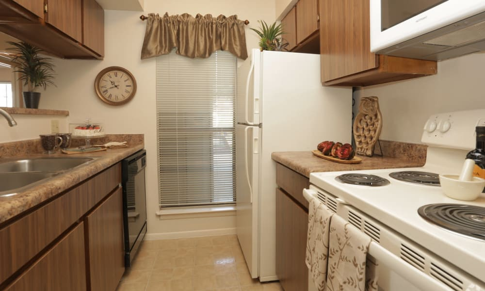 Kitchen with tall window at High Ridge Apartments in El Paso, Texas