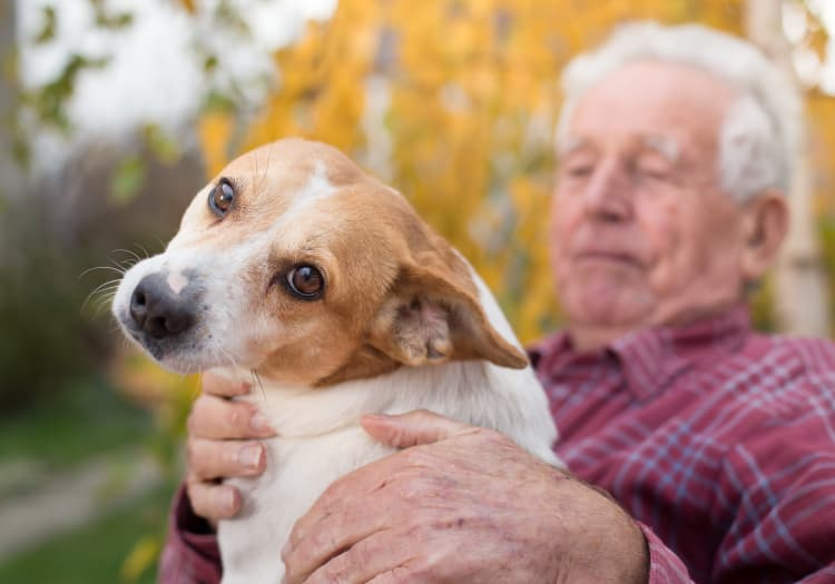 Seniors with his dog at MBK Senior Living in Irvine, California