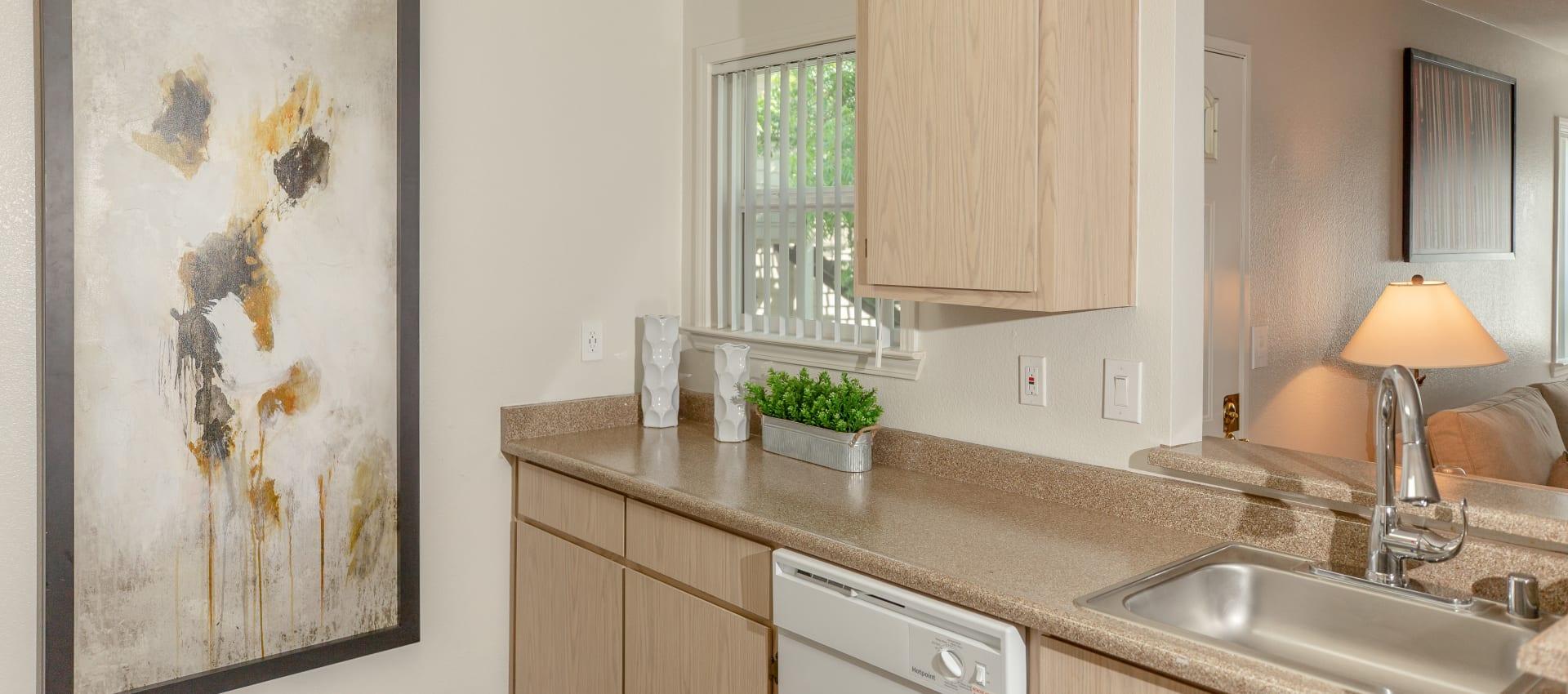 Kitchen area at Shaliko in Rocklin, California.