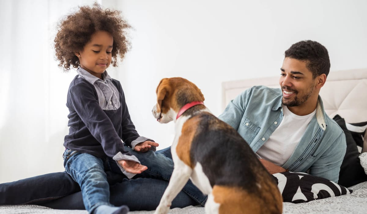 Father and daughter teaching their dog to shake in their apartment home at Olympus on Broadway in Carrollton, Texas