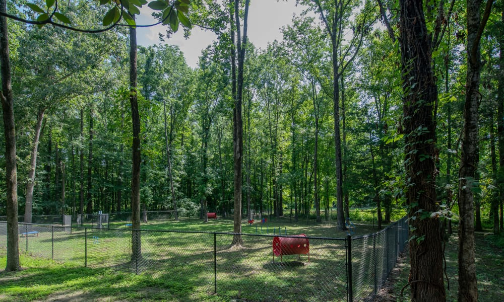 Onsite Bark Park at The Pointe of Ridgeland in Ridgeland, MS