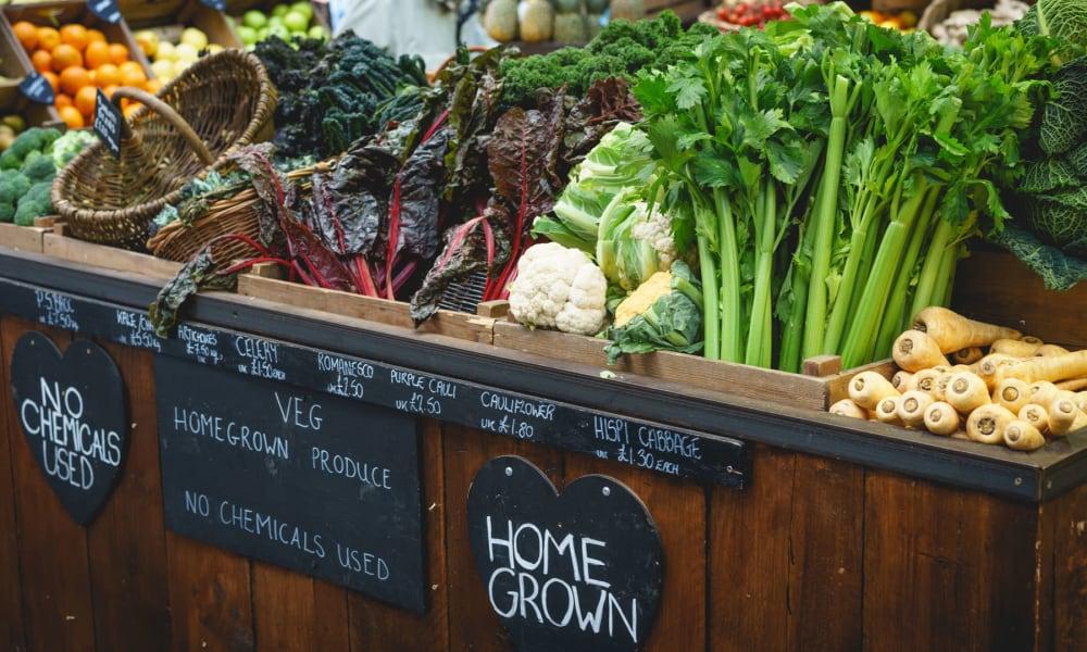Open-air farmers market near Valley Plaza Villages in Pleasanton, California