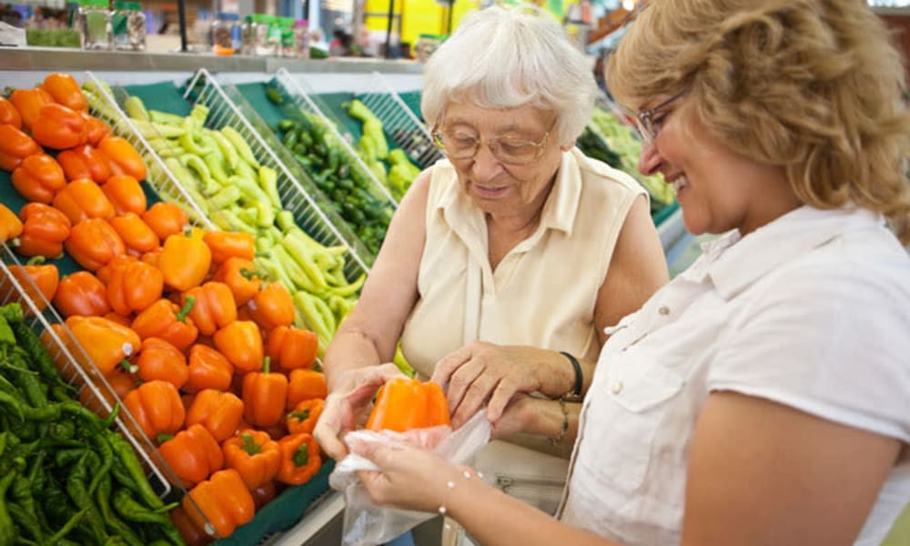A caretaker from Chestnut Knoll at Home in Gilbertsville, Pennsylvania helping a resident grocery shopping