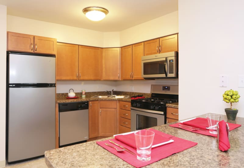 Kitchen with stainless steel appliances at Blackhawk Apartments in Elgin, Illinois