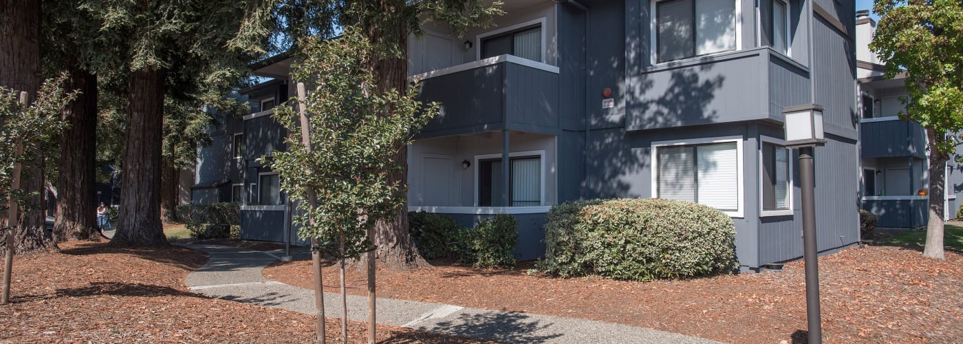 View photos of our luxurious property at Park Ridge Apartment Homes in Rohnert Park, CA