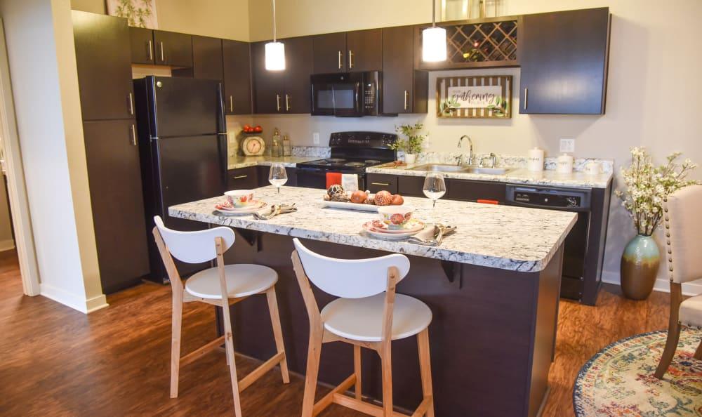 Modern kitchens at Springs at Port Charlotte in Port Charlotte