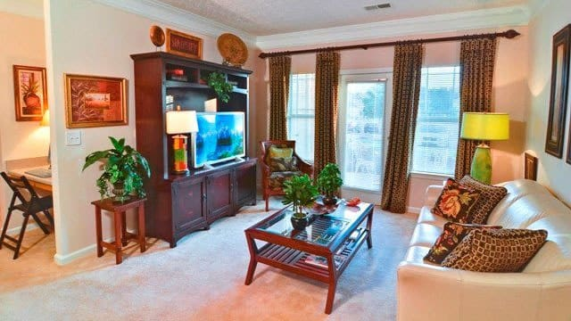 Haddon Place offers a naturally well-lit living room in McDonough, GA