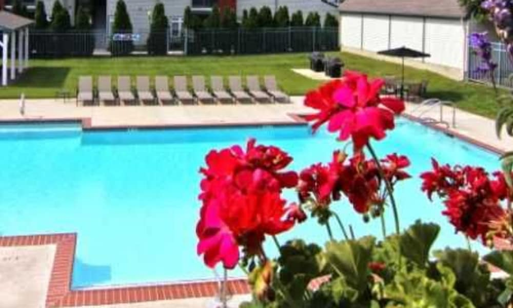 Our apartments in Cherry Hill, NJ showcase a beautiful swimming pool