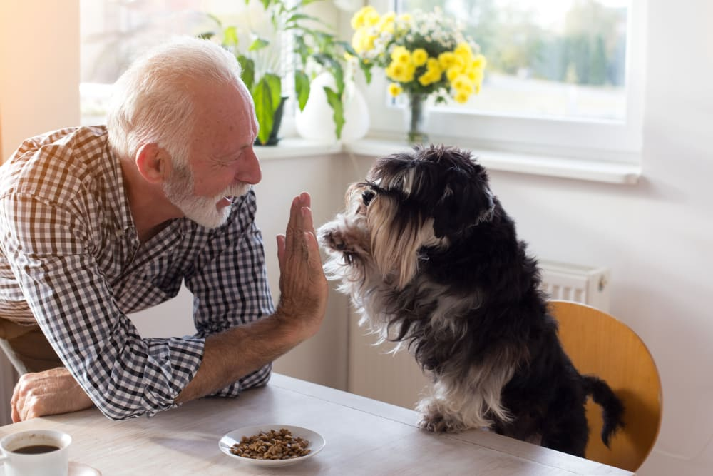 A dog and his owner enjoying their new home at Riverstone Apartments in Bolingbrook, Illinois