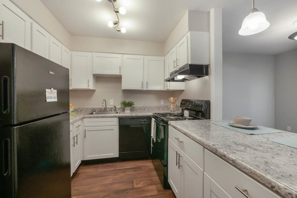 A kitchen with white cabinets and black appliances at Riverside North in Chattanooga, Tennessee
