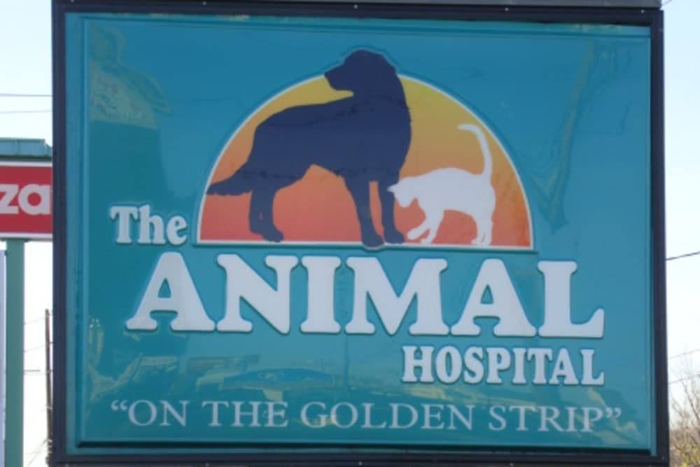 Entry at The Animal Hospital on the Golden Strip in Williamsport, Pennsylvania